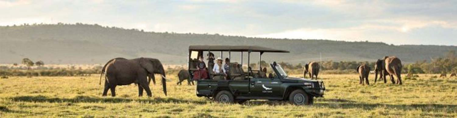 large elephant and small baby close to safari truck with mother, father and two young children